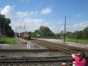 NS and BNSF appoarching Southbound(eastbound for you NS Sandusky Line folks)